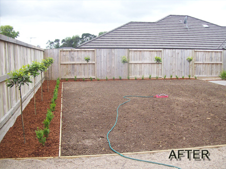 Garden design hamilton lawns mowing gardening landscaping for Landscape design ideas nz