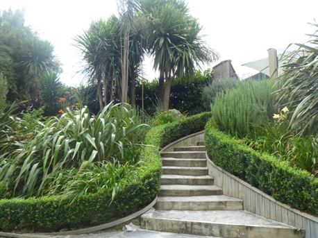 Broadfields nz landscape garden for Landscape design ideas nz
